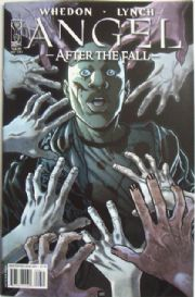 Angel After The Fall #8 Cover A Season 6 IDW Comics US Import